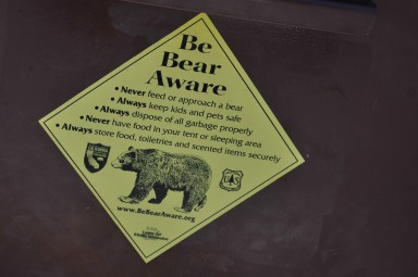 Attention au ours !